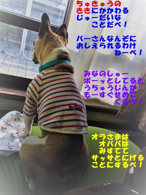 IMG_8180_20180127093939ecb.jpg
