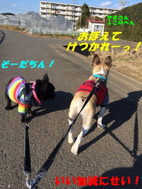 IMG_8805.jpg