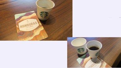 ホンジュラスコーヒーの試飲2杯