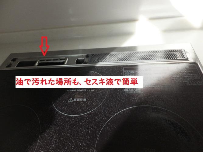 DSCF5881_1.jpg
