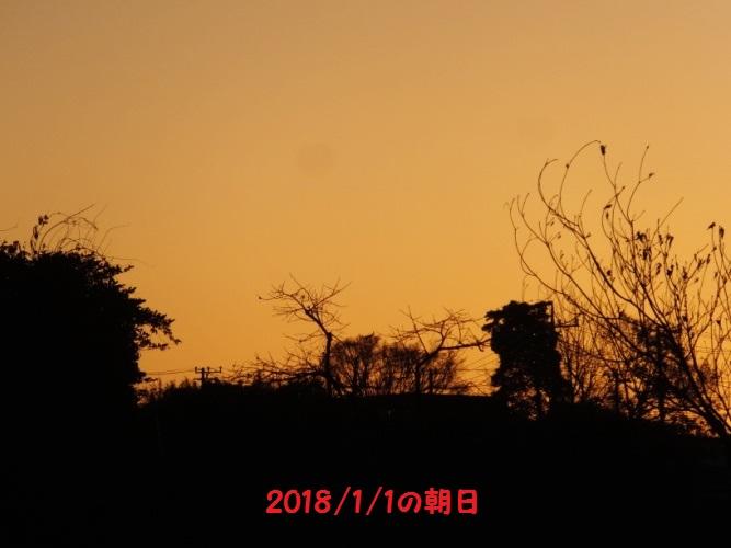 DSCF6163_1.jpg