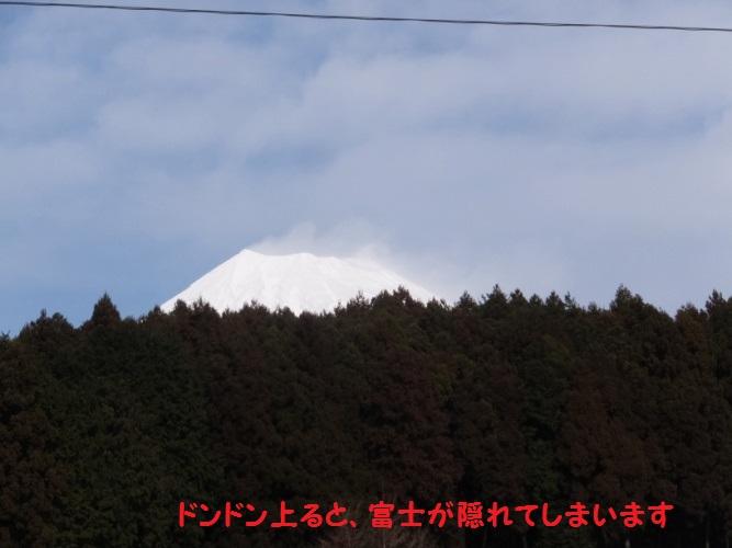 DSCF6376_1.jpg