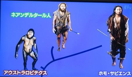 人への進化2