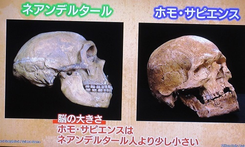 人への進化3