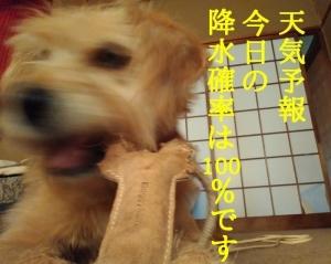 00ePkdMw_Lrdoe41515416167_1515417436.jpg
