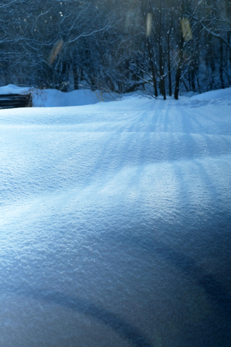 雪と結晶03