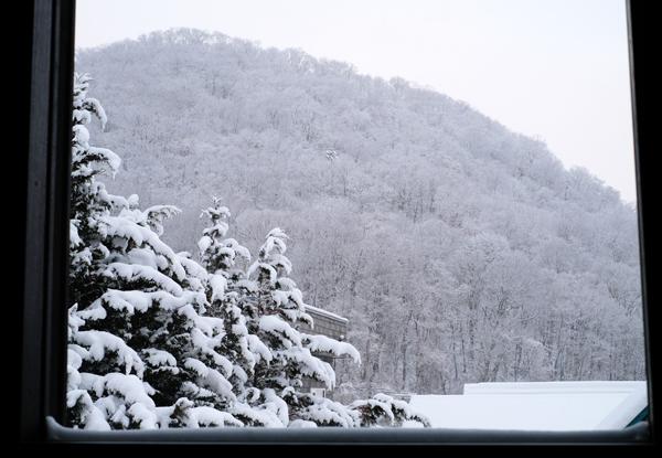 雪と結晶06