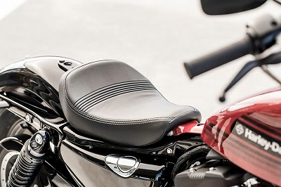sportster-forty-eight-special-gallery-4_wdp.jpg