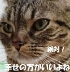 20171216160538d6d.jpg