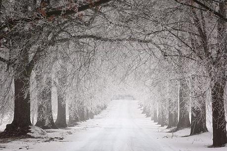 雪無料画像