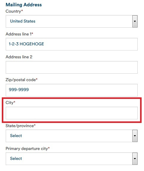 住所入力欄(正しい結果)