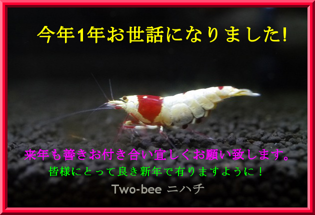 Two-bee