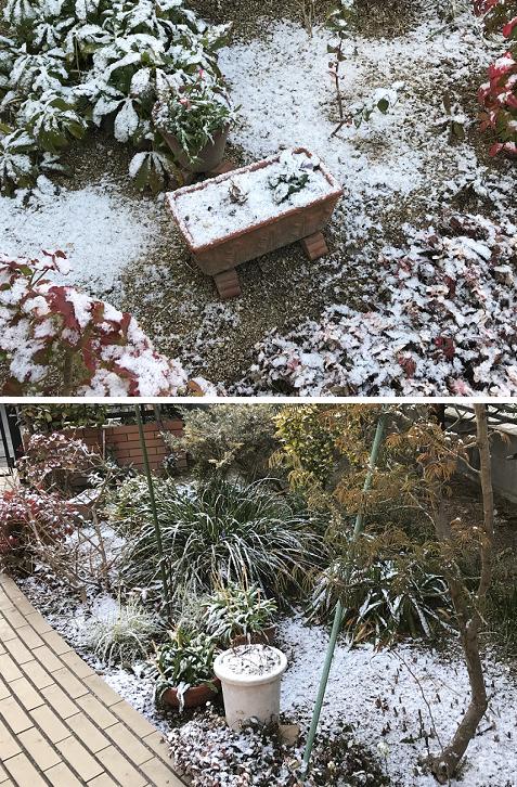 20180207雪