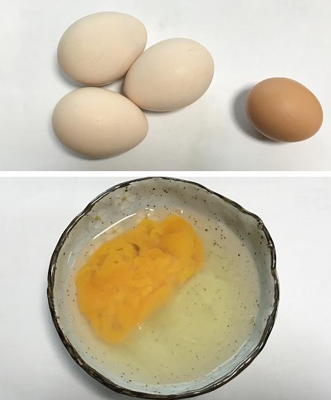 20180214孔雀の卵