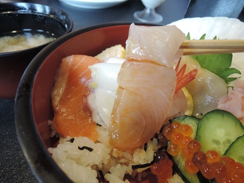 光寿司11