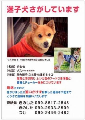 すももちゃん_convert_20180124130740