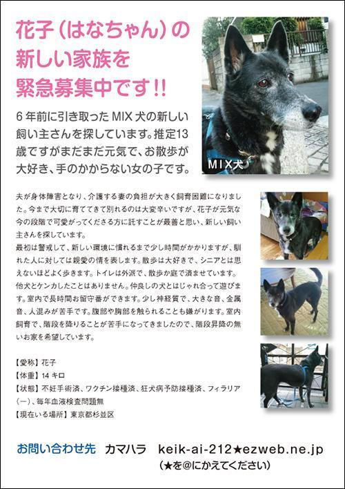 はなちゃん_convert_20180216110830