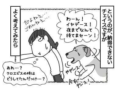 03012018_dog3mini.jpg