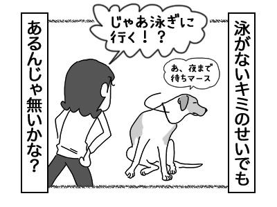 03012018_dog4.jpg
