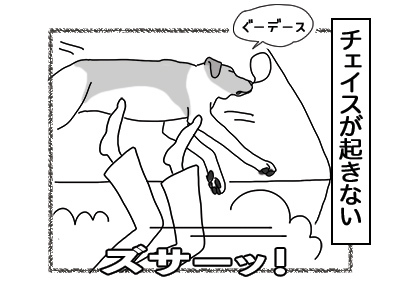 04012018_dog3mini.jpg