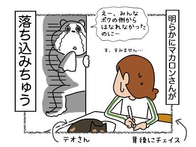 15022018_dog5mini.jpg