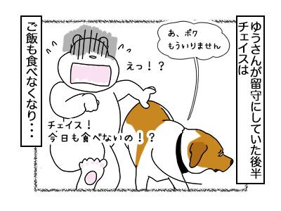 16022018_dog1mini.jpg