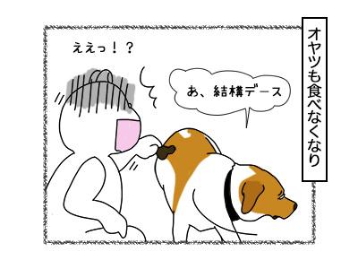 16022018_dog2mini.jpg