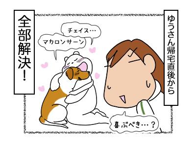 16022018_dog4mini.jpg