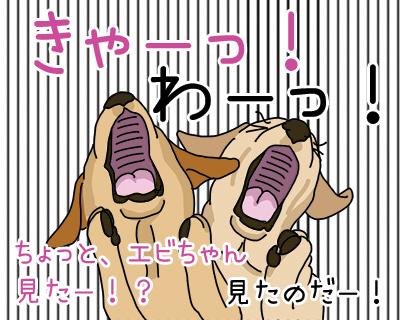 20012018_dog1.jpg