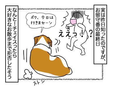 20022018_dog1mini.jpg