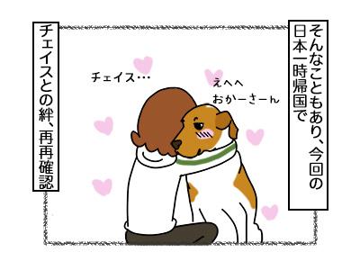 20022018_dog2mini.jpg