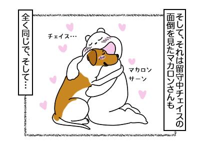 20022018_dog3mini.jpg
