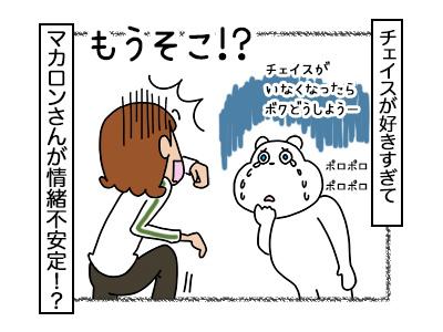 20022018_dog4mini.jpg