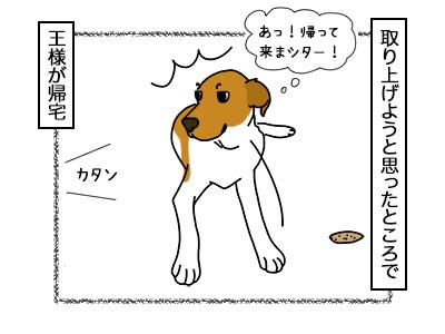 21022018_dog3.jpg