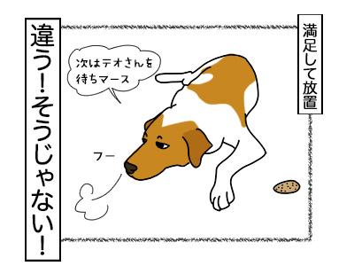 21022018_dog6.jpg