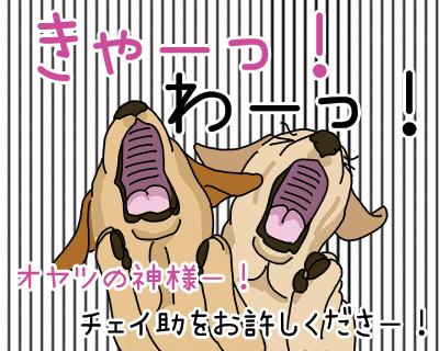 22022018_dog1.jpg