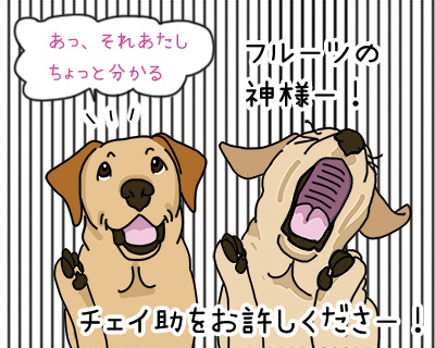 22022018_dog2.jpg