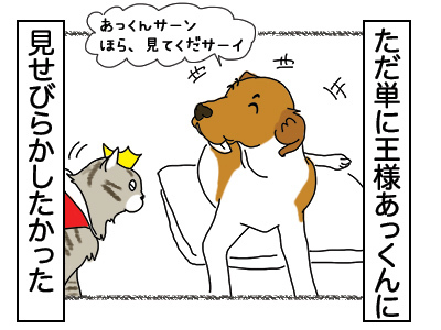 23012018_dogillustration1.jpg