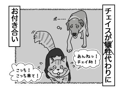24012018_dog4mini.jpg