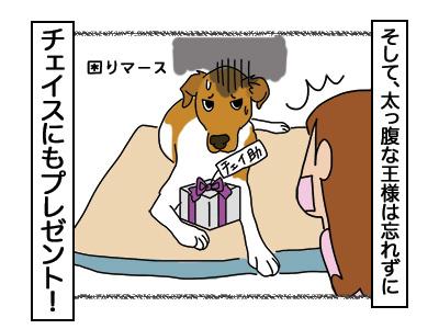 25012018_dog4miniB.jpg