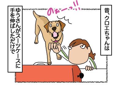 29012018_dog1mini.jpg