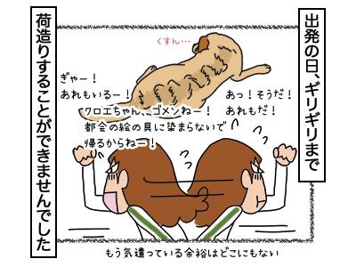 29012018_dog3mini.jpg