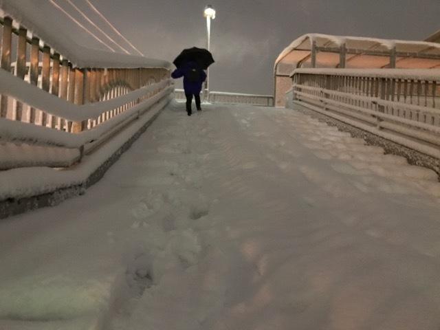 雪かき (7)
