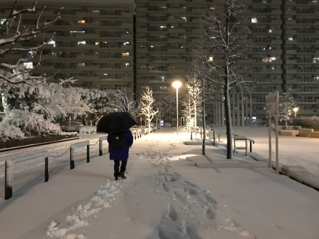 雪かき (9)