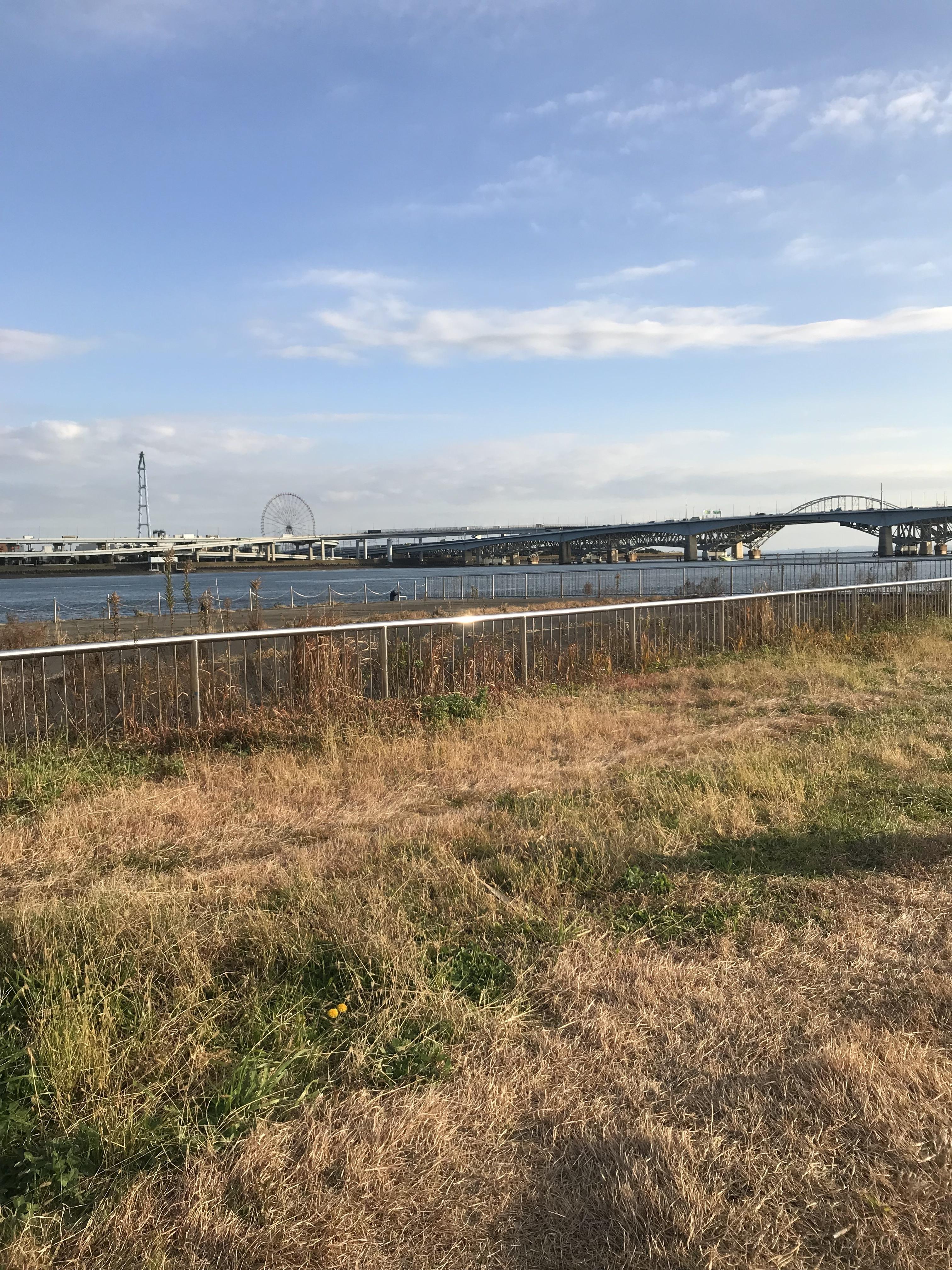 荒川河口までサイクリング