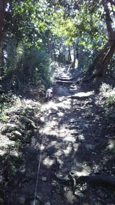 観音崎公園 キャバマル