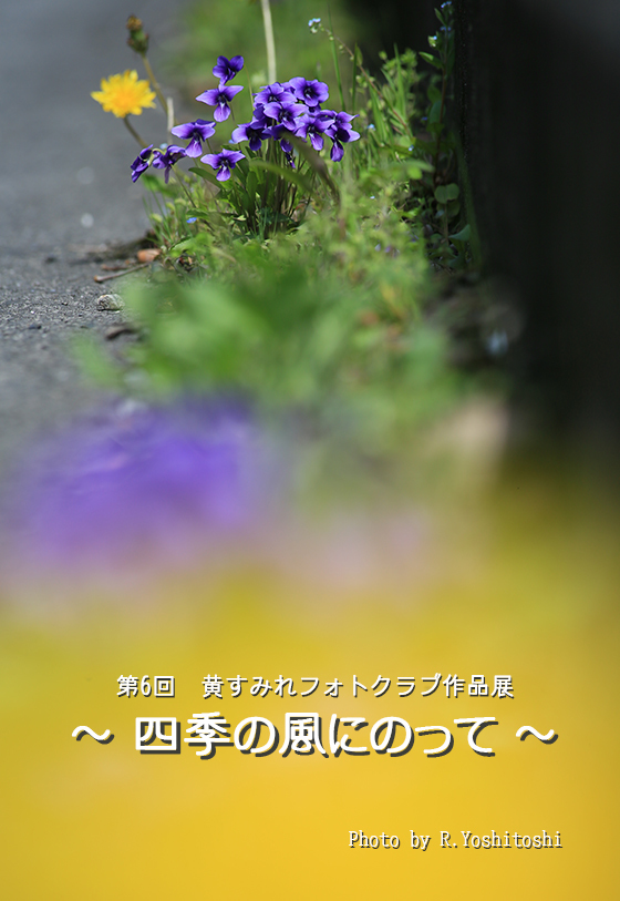 2018年 案内ハガキ_文面M