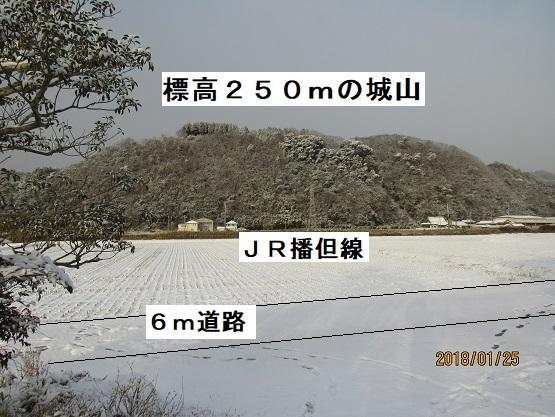 IMG_4263-17.jpg