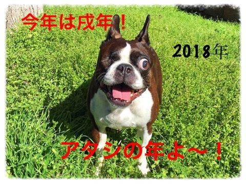20180102112903ab6.jpeg
