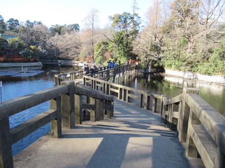 井の頭公園かいぼり散歩